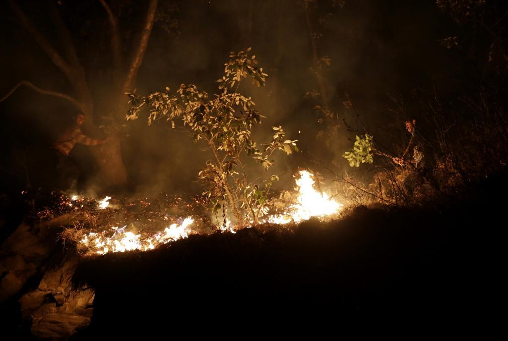 Two arrested in Odisha for trying to set jungle on fire. Photo: Vikas Choudhary/CSE