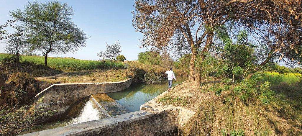 On World Water Day, Down To Earth travels to Himmatpura, where MGNREGA has enabled multi-cropping