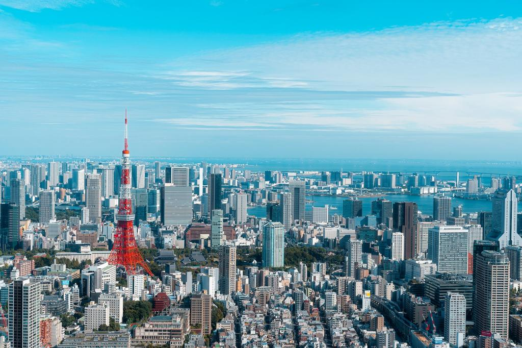 Japan has rolled out a bevy of projects to be carbon neutral by 2050. Are they enough?
