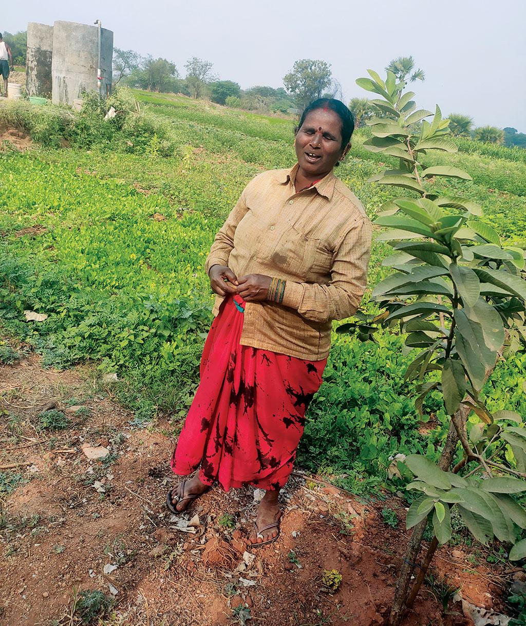 Residents of Manchal village in Telangana's Ranga Reddy district levelled their undulating lands and used the stones to form bunds around the field (Photograph: Shagun Kapil)