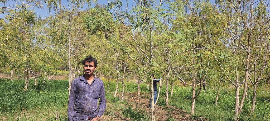 डाउन टू अर्थ ने मध्य प्रदेश के टीकमगढ़ जिले के नादिया गांव का दौरा किया।