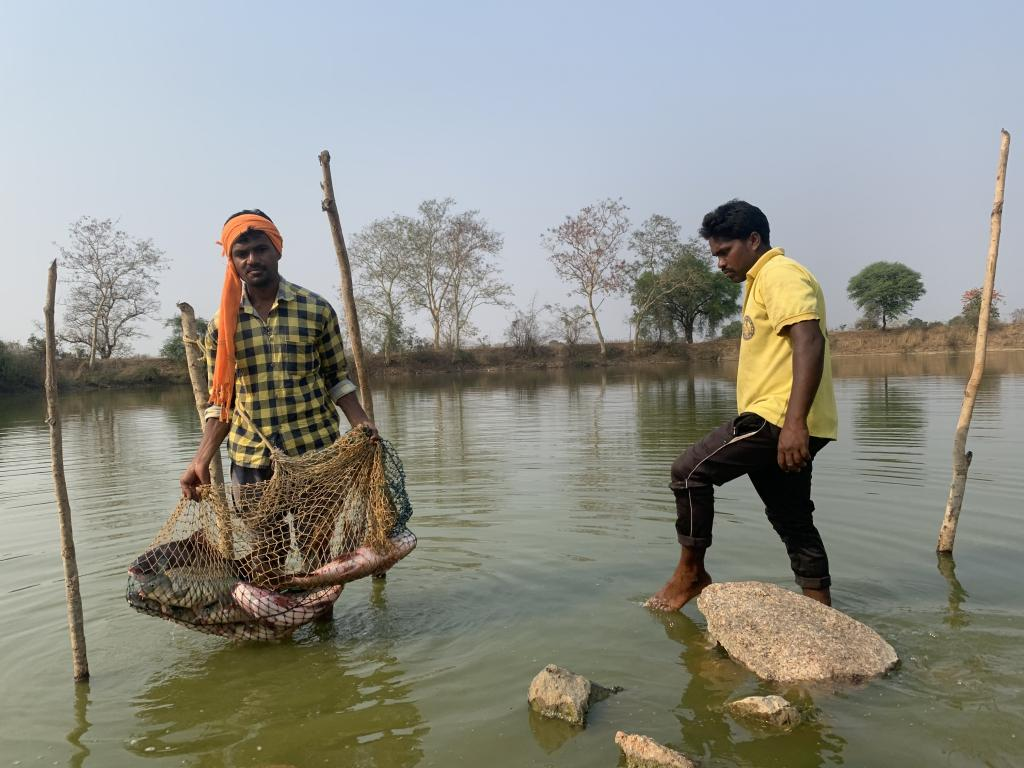 In this Maharashtra village, profits from fish yield pay for wedding ceremonies. Photo: Ishan Kukreti