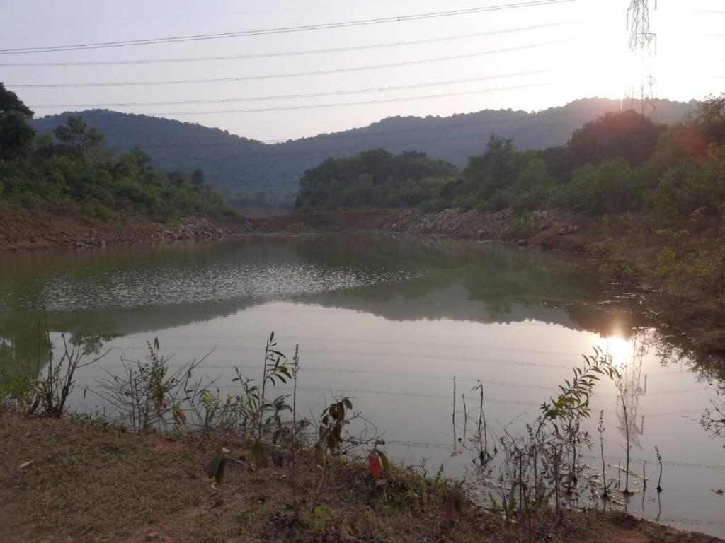 A farm pond dug up by the villagers of Hatiganj under Kantapada panchayat under the watershed project. Several acres of farmland surrounding the pond make a good harvest every year due to enhanced soil moisture and irrigation facility. Photo: Ashok Satpathy