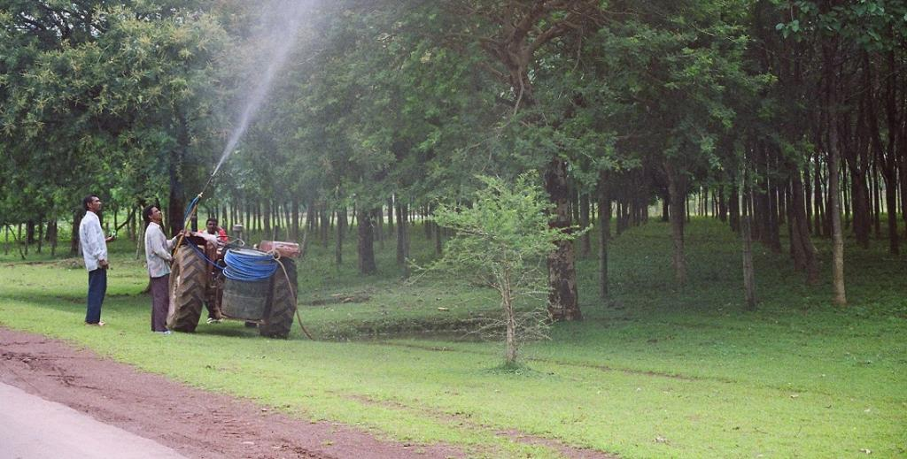 64 per cent of world's arable land at risk of pesticide pollution: Study