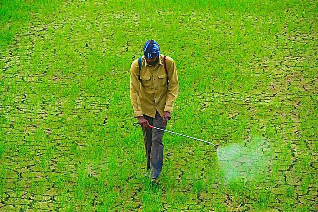 64 percent of agricultural land around the world is prone to pesticide pollution