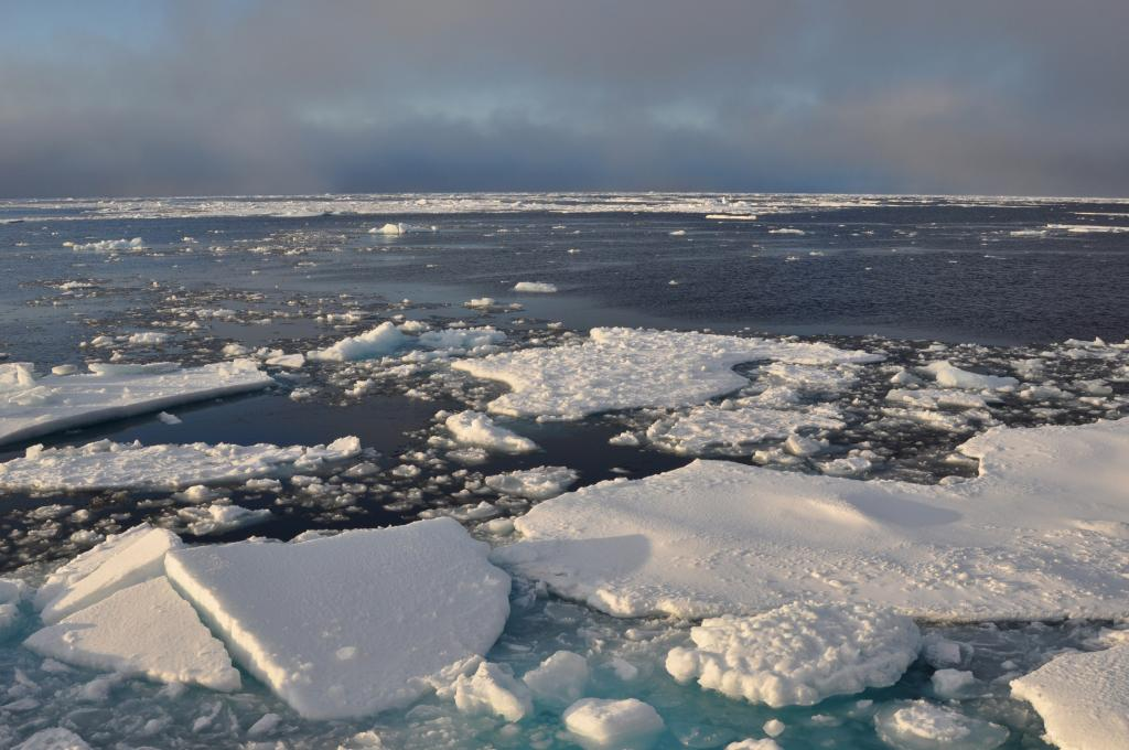 Arctic winter sea ice in 2021 seventh-lowest on record, finds NASA. Photo: Wikipedia