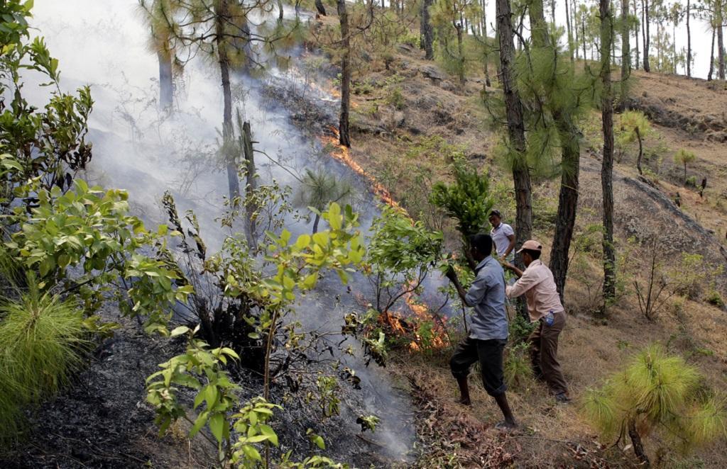 उत्तराखंड के जंगलों में लगी आग को बुझाने के लिए स्थानीय लोग भी आगे आ रहे हैं। फाइल फोटो: विकास चौधरी