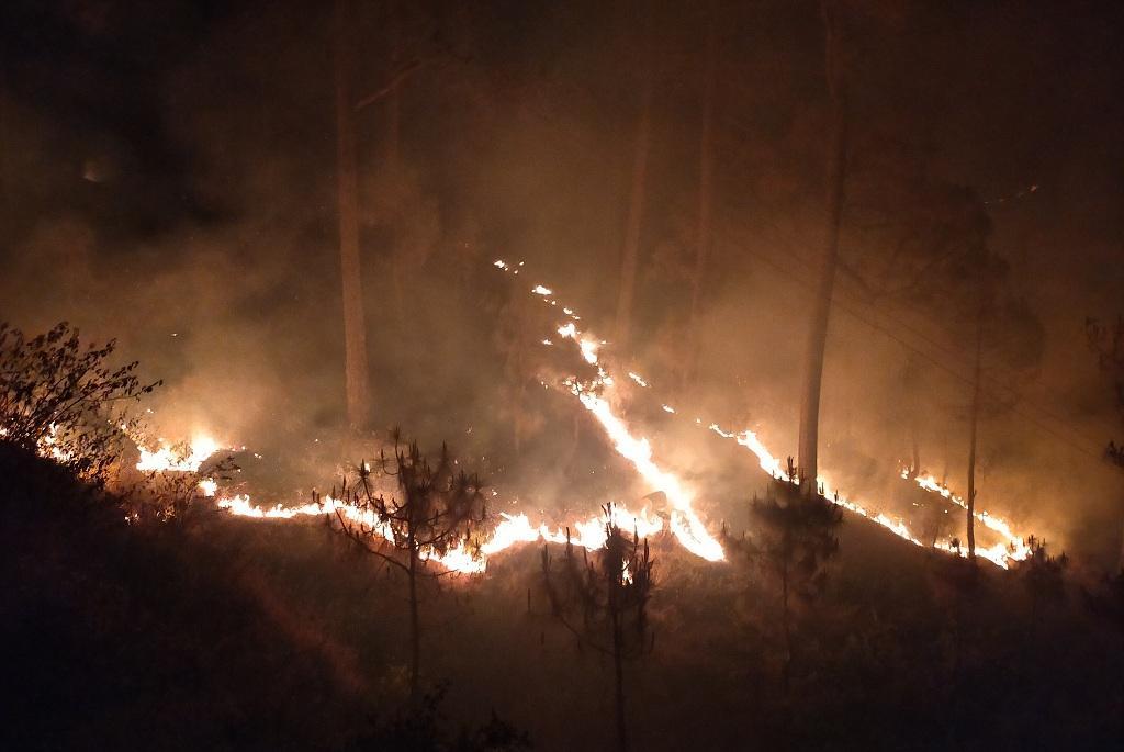 फोरेस्ट सर्वे ऑफ इंडिया के पोर्टल के मुताबिक, 5 अप्रैल को उत्तराखंड में 71 जगहों में आग लगी हुई थी। फोटो: मनमीत सिंह