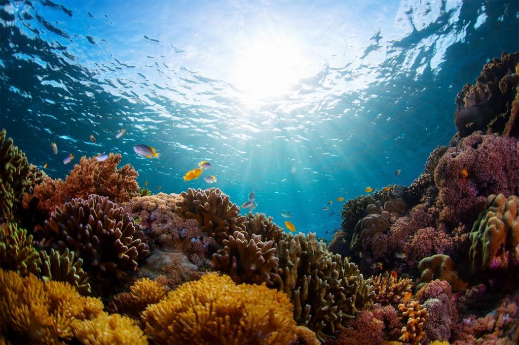 What happened when the oceans went quiet? Scientists set to find out
