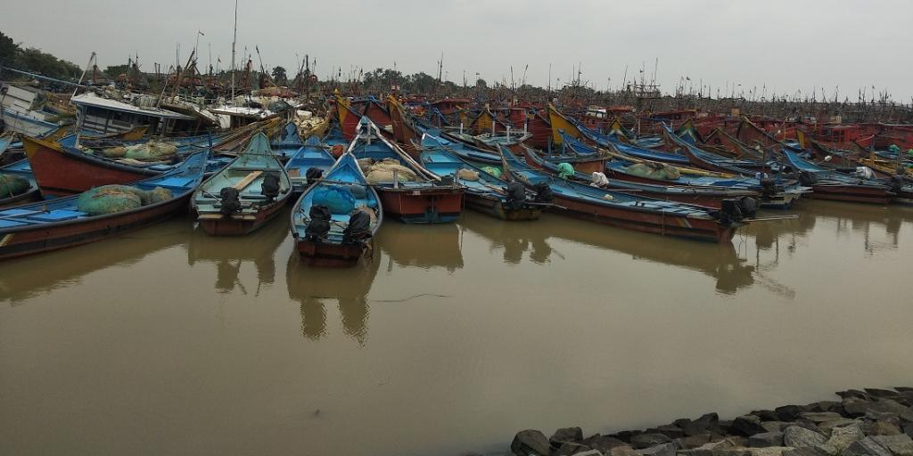 Odisha government announces two-month fishing ban to conserve fish stocks