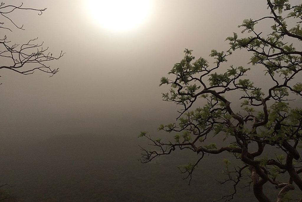 मौसम अपडेट: देश में आज कहां उठेंगे धूल के गुबार और कहां होगी भारी बारिश, जाने देश के मौसम का हाल