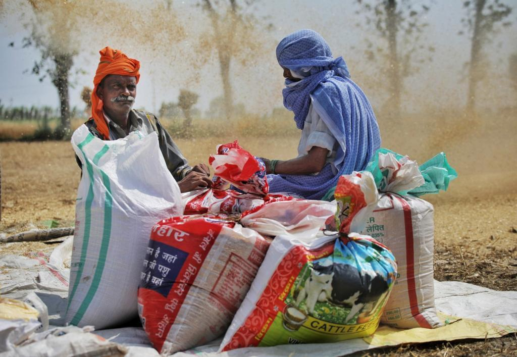Gunny bag shortage, brokers' strike leads to 'unlifted' wheat in Punjab mandis