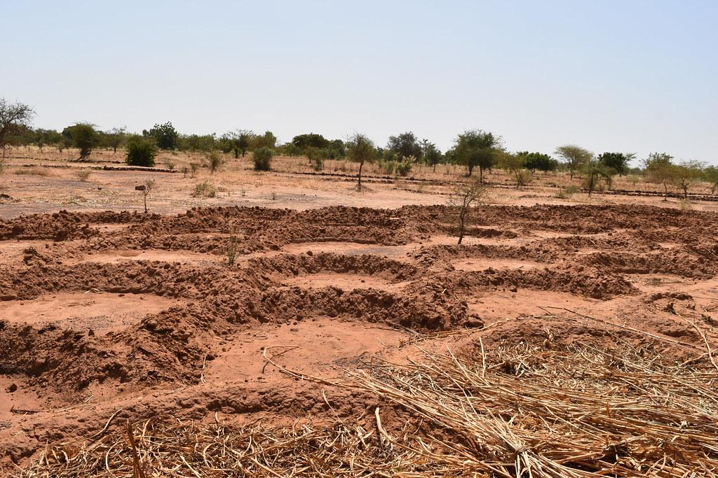 The Sudano-Sahelian Zone in West Africa is the most vulnerable to climate change. Photo: Flickr