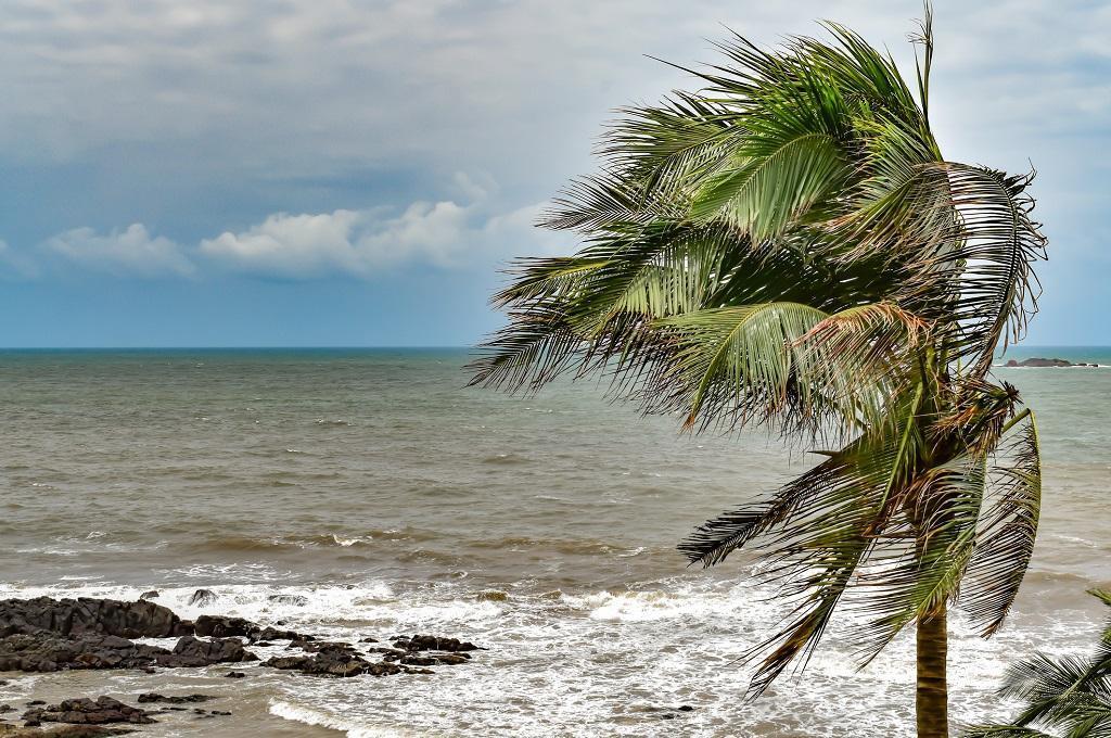 Monsoon reaches Bay of Bengal, Kerala onset on May 31: IMD.