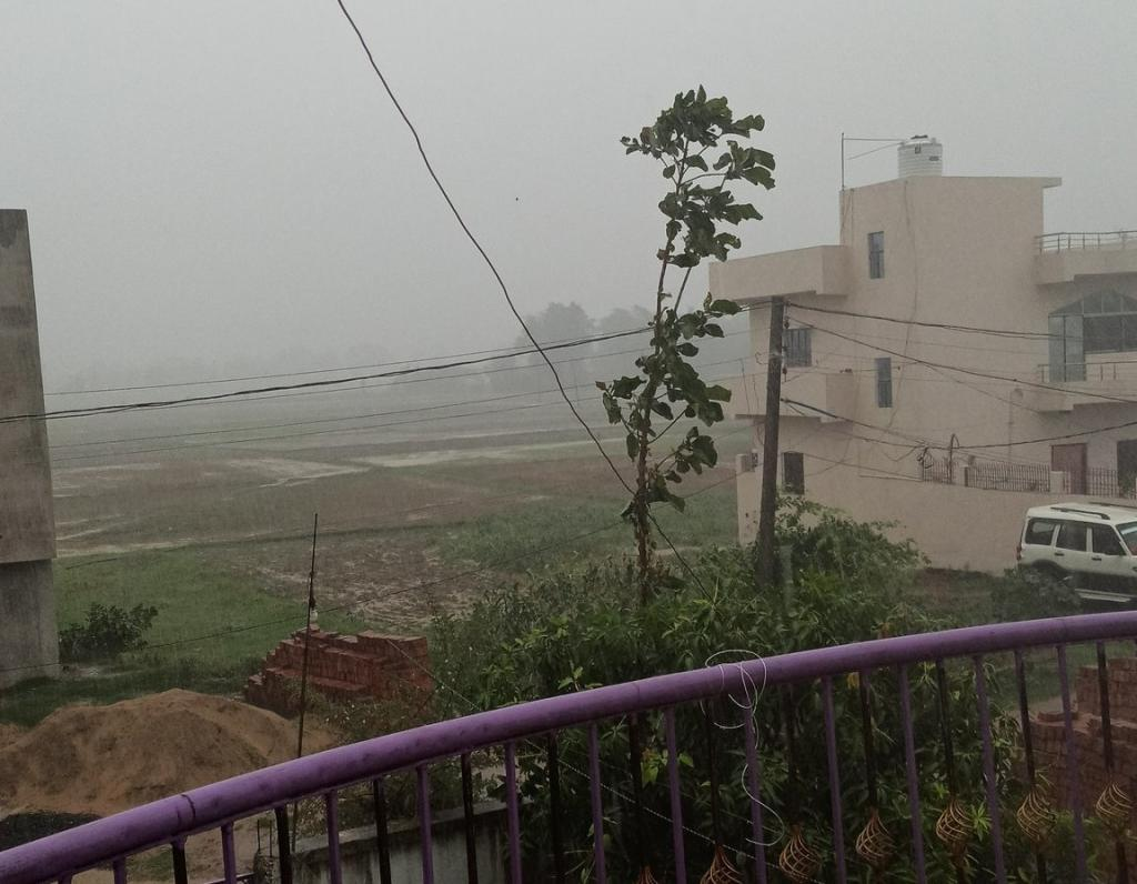 IMD predicted moderate to heavy rainfall in some parts of Bihar. Photo: _ilanos / Twitter