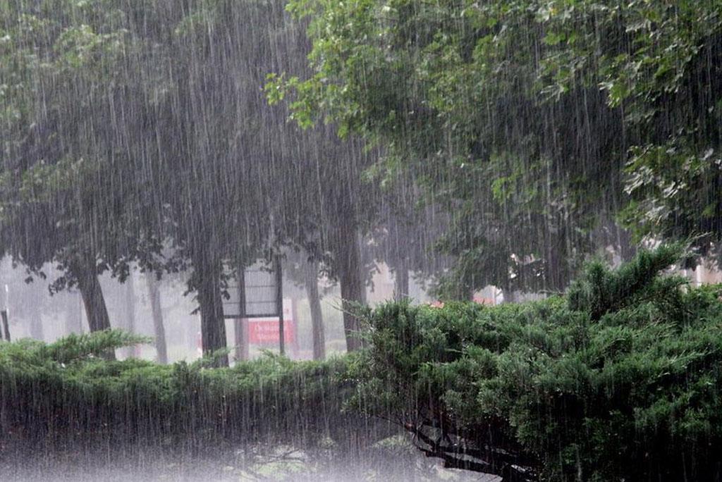 मौसम अपडेट: केरल और बिहार के साथ देश के किन राज्यों में होगी मूसलाधार बारिश जाने देश के मौसम का हाल