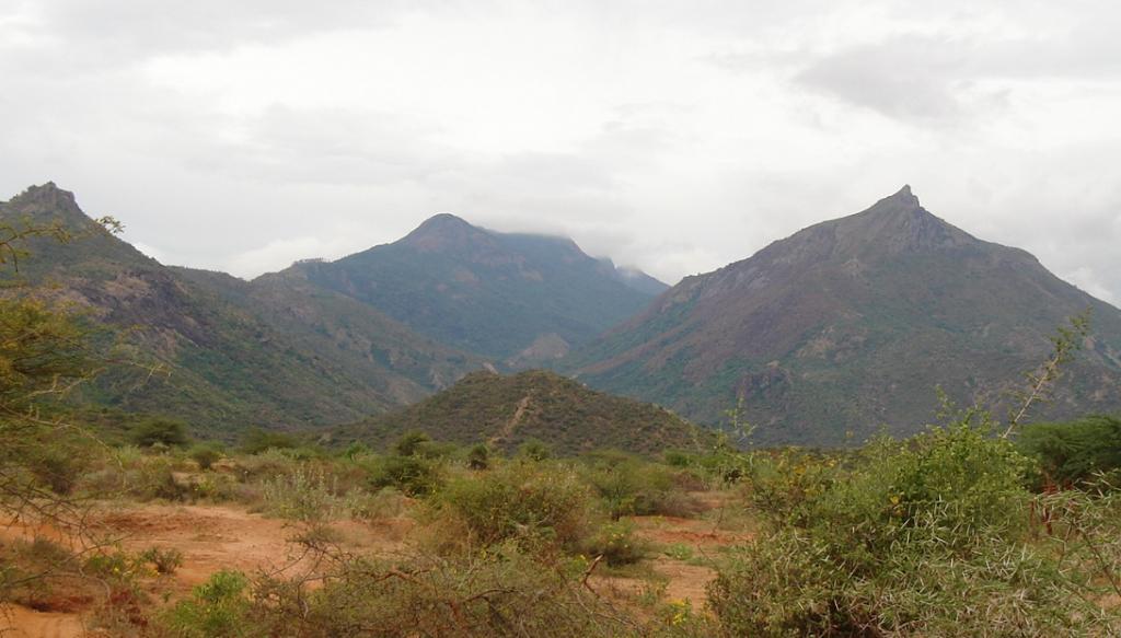 The Megamalai hills. Photo: Mprabaharan via Wikimedia