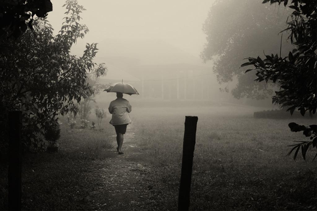 मैडेन जूलियन ऑसीलेशन क्या है? यह वर्षा को कैसे प्रभावित करता है?