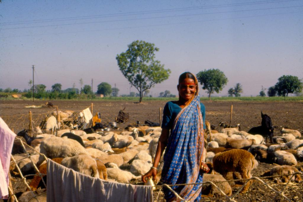 Global food systems are not thinking about women. A UN report calls for action. Photo: CSE / DTE