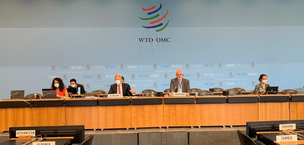 The WTO TRIPS Conference in Geneva. Photo: @wto / Twitter