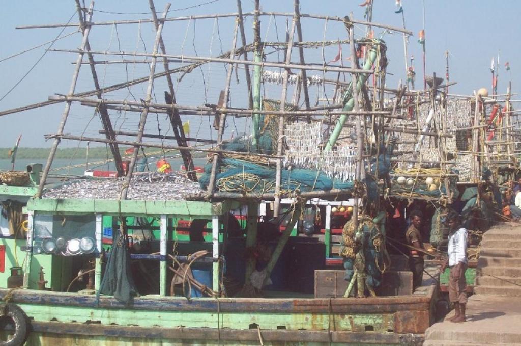 Fishing trawlers in the harbour at Paradip. Photo: Ashis Senapati