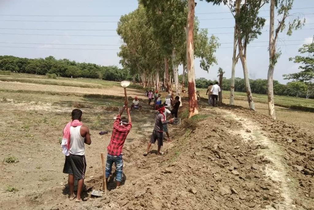 सीतामढ़ी में मनरेगा के तहत हो रहा काम; फ़ोटो: बिहार सरकार, सोशल मीडिया