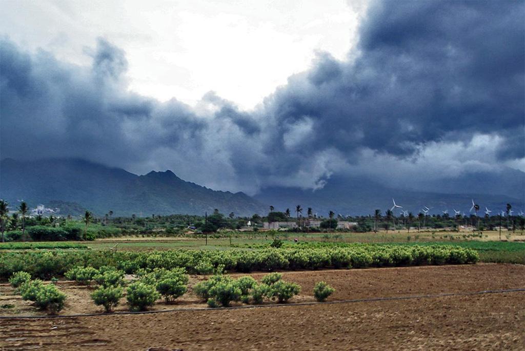 मानसून के एक हफ्ते बाद दिल्ली, हरियाणा और पंजाब पहुंचने की उम्मीद आज इन हिस्सों में होगी भारी बारिश