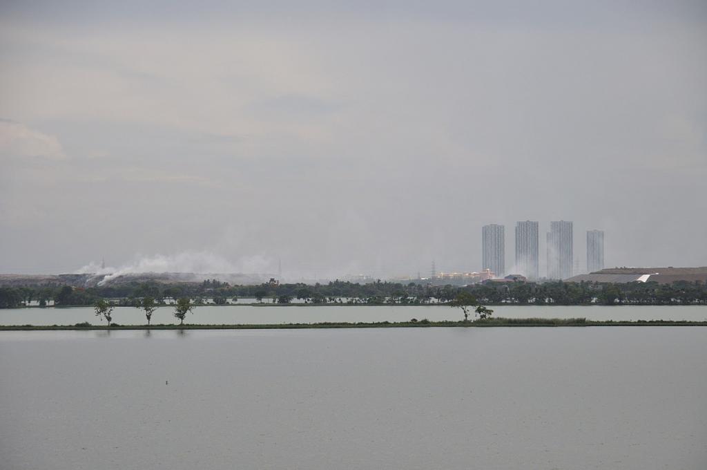 Environmental damage in East Kolkata Wasteland miniscule, says report. Photo: Biswarup Ganguly / Wikimedia Commons