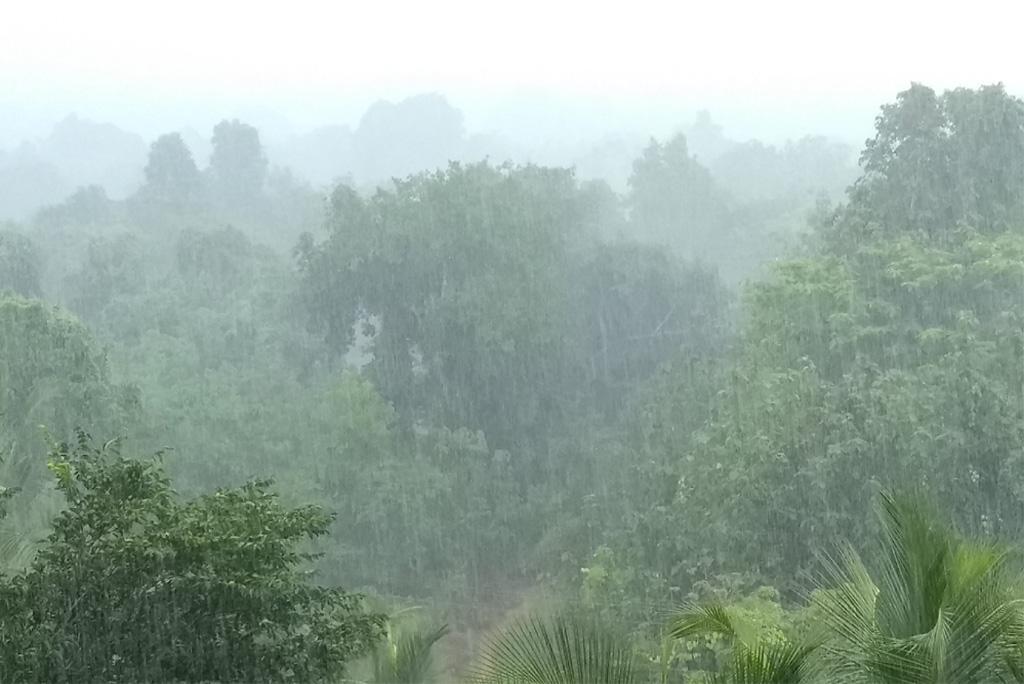 मानसून अपडेट: आज पश्चिम बंगाल और सिक्किम समेत कई राज्यों में मूसलाधार बारिश के आसार