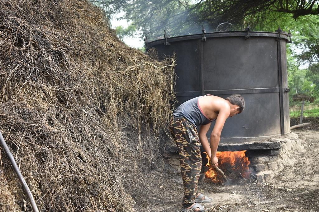 ऊंचाहार में पिपरमेंट की पेराई के लिए टंकी गर्म करता किसान (फ़ोटो गौरव गुलमोहर)