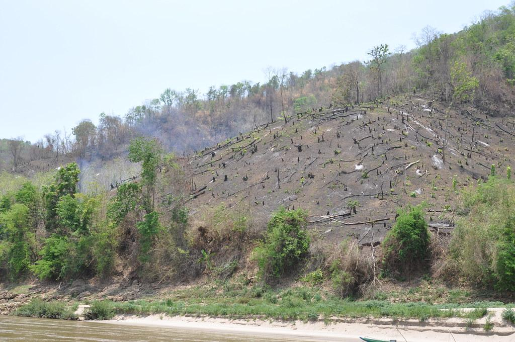 Deforestation in the mountains of southeast Asia has accelerated in the last 10 years. Photo: Wikimedia Commons