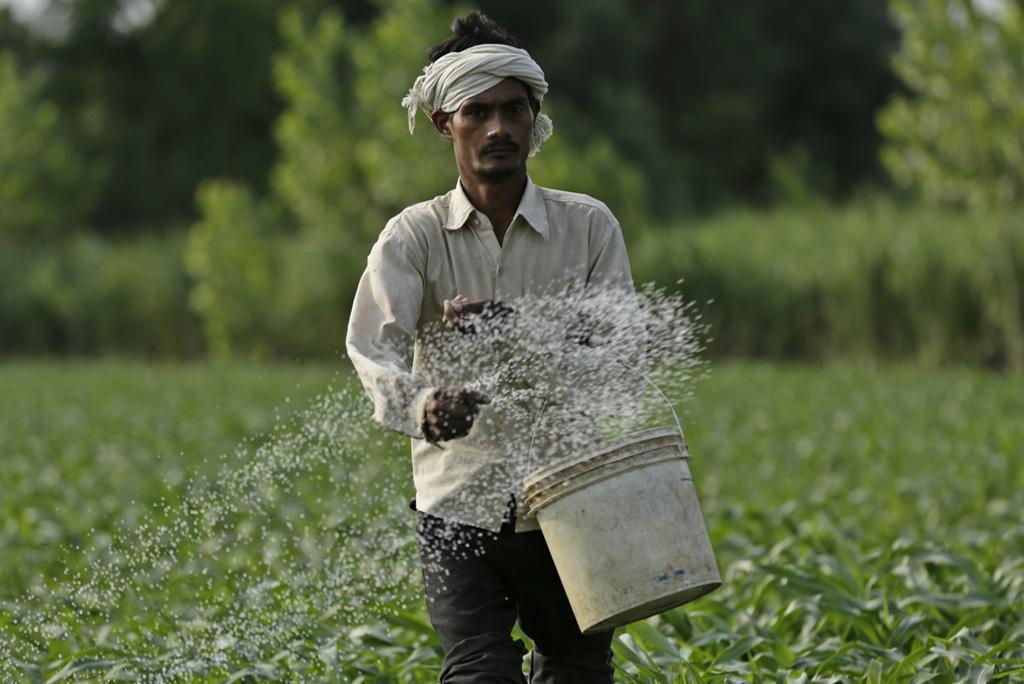कृषि में कितनी मात्रा में हो नाइट्रोजन का उपयोग, वैज्ञानिकों ने दिखाई राह