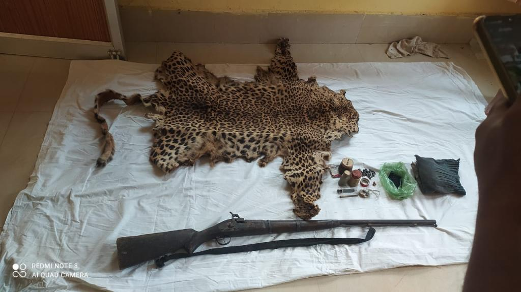 At least 10 leopard skins seized in Odisha. Photo: By special arrangement.