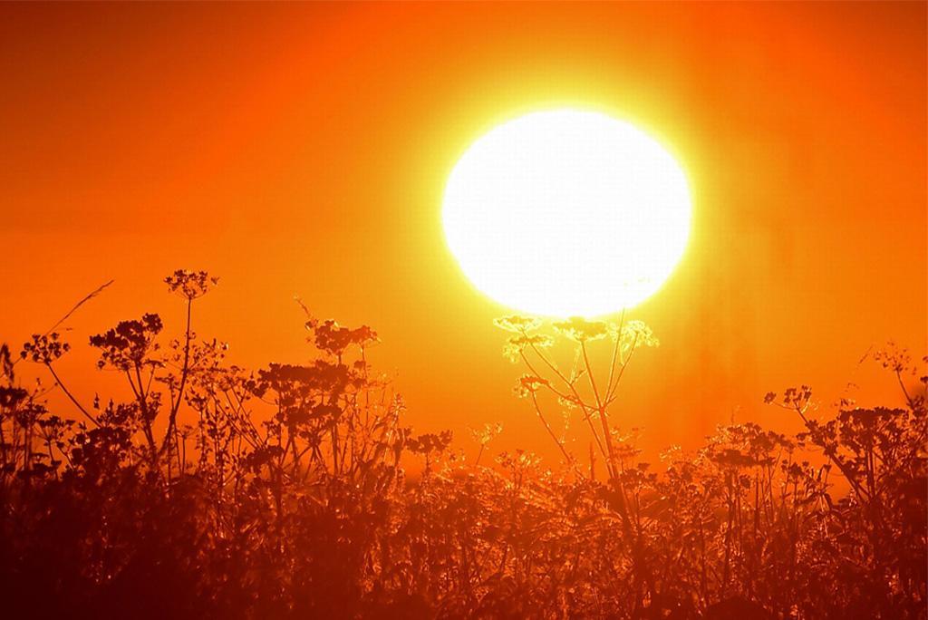 ग्लोबल वार्मिंग के चलते दक्षिण पूर्व एशिया में लगातार बढ़ेगीं लू की घटनाएं: अध्ययन
