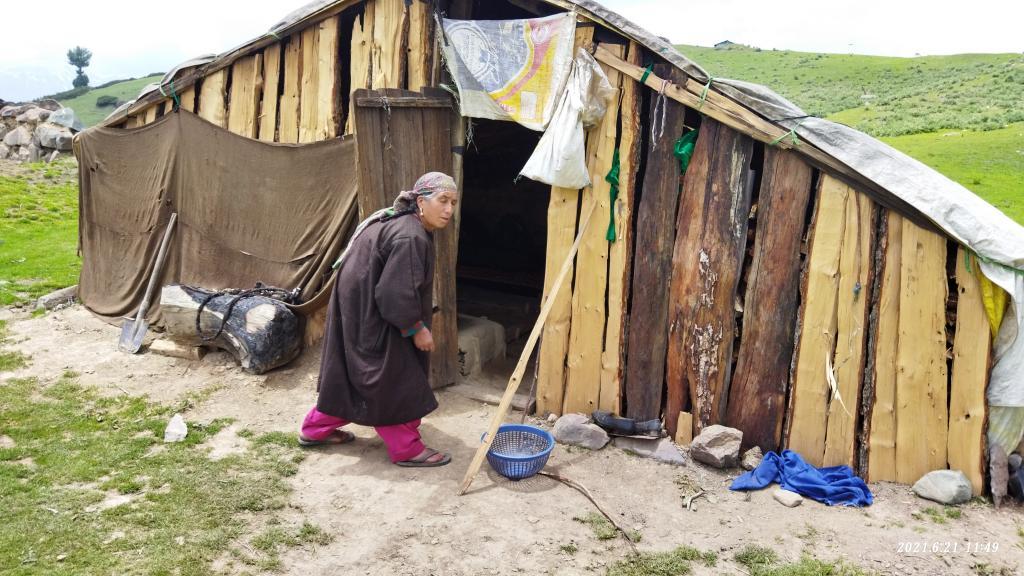 Kashmiri pastoralists unable to get benefits of Forest Rights Act. Photo: Raja Muzaffar Bhat