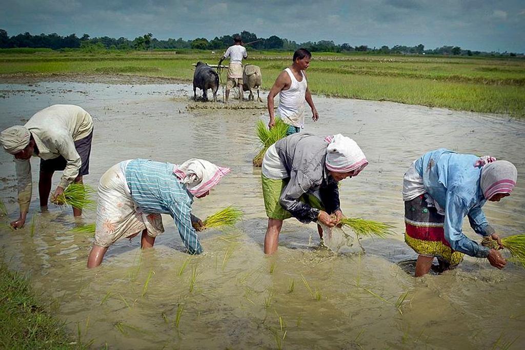 मानसून अपडेट: आज पूर्वोत्तर भारत सहित देश के इन हिस्सों में बरसेंगे बादल