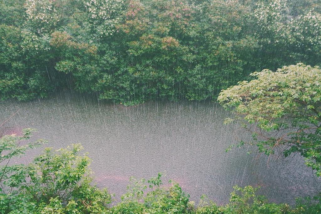मानसून अपडेट: आज पूर्वोत्तर के कई हिस्सों, उत्तराखंड और बिहार समेत इन इलाकों में बरसेंगे बादल