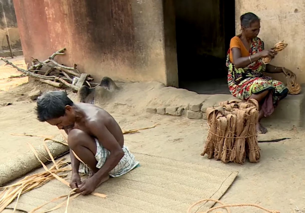 Around 2,000 landless, poor families in the forests of Odisha, mostly from the Mankadia tribe, earn a livelihood by making craft items with Siali leaves, found abundantly in the state's woodlands. The traditional practice requires little capital and the products are sold in the adjoining villages as well as Cuttack and Bhubaneswar in hundreds.