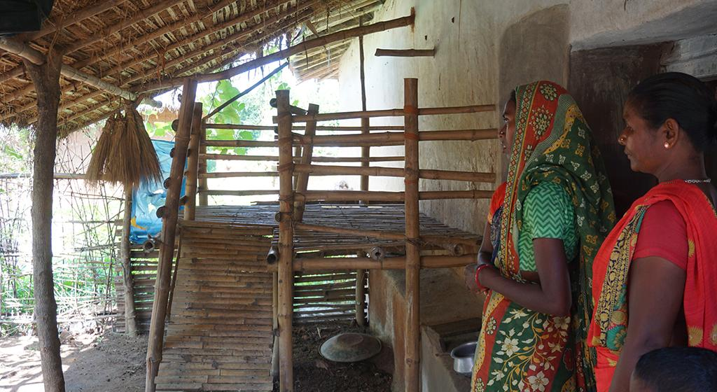 An elevated space prepared by women for goats. This helps keep the area clean and reduces chances of disease.
