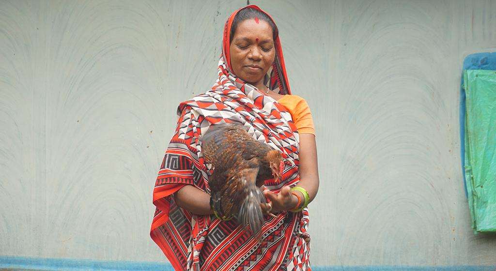 Anabati Devi owns of a flock of over 60 hens. A single batch pays her more than Rs 5,000. She also extends her knowledge and support to 26 farmers as Pashu Sakhi, earning Rs 2,000 a month by supporting vaccination processes.