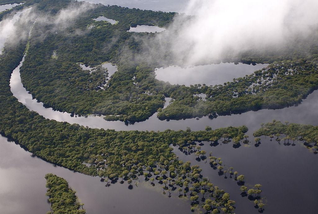 Human activity is slowly killing the world's rivers, study illustrates. Photo: Jason Auch / Wikimedia Commons