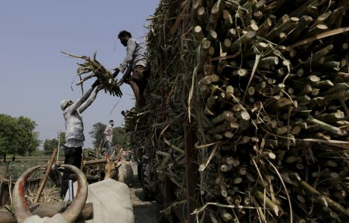 Sugar mills owe cane farmers Rs 18,143 crore