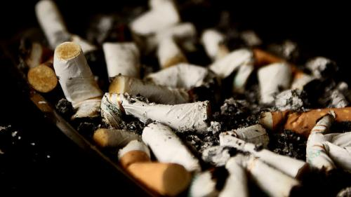 Nearly six million people die from tobacco use or passive exposure to smoke, accounting for 6 per cent of female and 12 per cent of male deaths worldwide