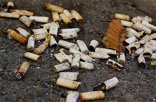 Cigarette filters are made of cellulose acetate that aids the transfer of metals in marine environment (Credit: waferboard/Flickr)