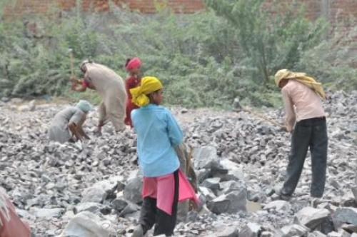 How many people die of silicosis in Indian mines?