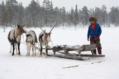 After the death of 2,300 reindeers due to the outbreak, the area has been evacuated (Credit: iStock Images)