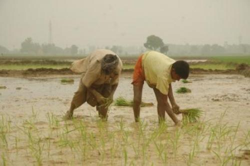 More than a billion people rely on the monsoon for agriculture and economics