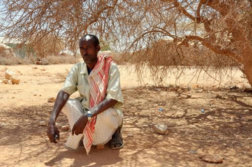 Drought, land degradation affect 1.5 billion people: UN report