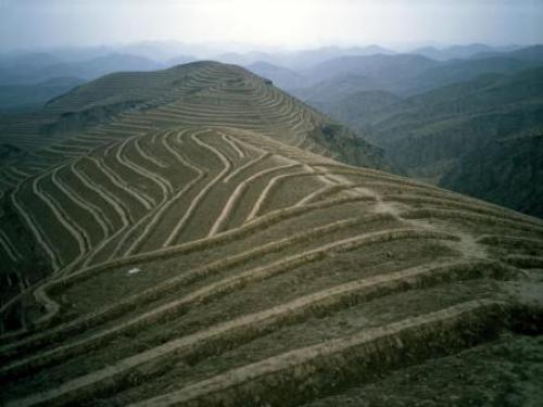 The plateau region in China's northwest is home to more than 50 million people, according to the World Bank data. Photo shows terraces constructed on the slopes of the Loess Plateau for land rehabilitation with trees