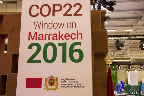 COP 22, as it turned out